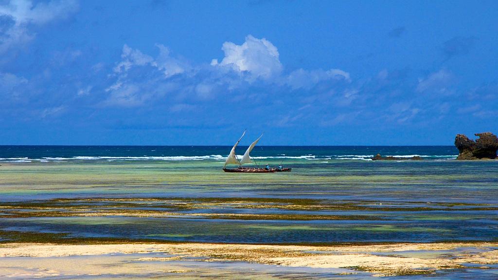 Coral reef - Kenya