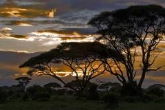 Sunset in Savannah - Kenya