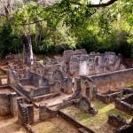 Ruins of Gede (Gedi)