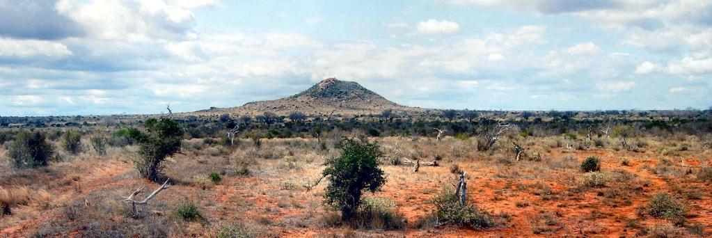 Kenya Wildlife-Kenya Holidays