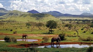Tsawo East National Park-Kenya