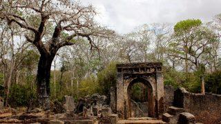 Gede ruins-Kenya Holidays