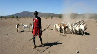 Kenya land of shepherds-Kenya Holidays