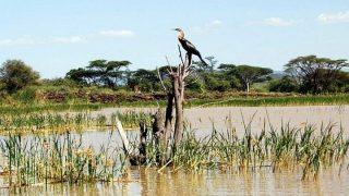 Lake Baringo-Kenya Holidays