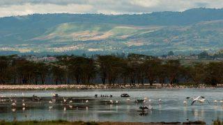 Lake Elmenteita-Kenya Holidays