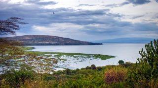Lake Naivasha-Kenya Holidays