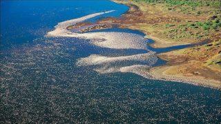 Lake Nakuru-Kenya Holidays