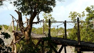 Mida Creek Watamu-Kenya Holidays