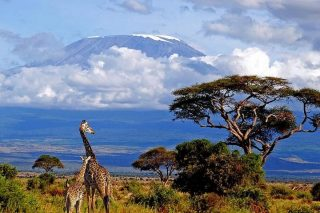Mount Kilimanjaro-Kenya Holidays