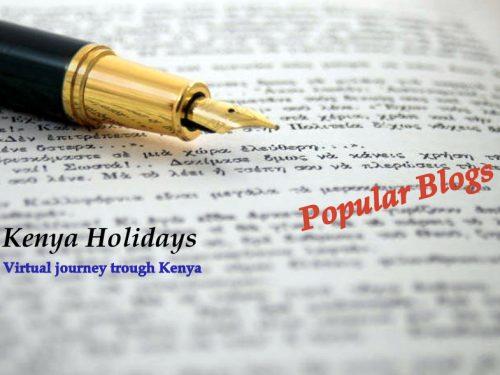 Kenya Popular Blogs