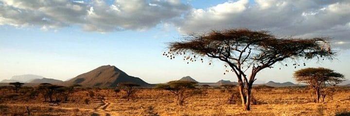 Kenya Holidays Preamble